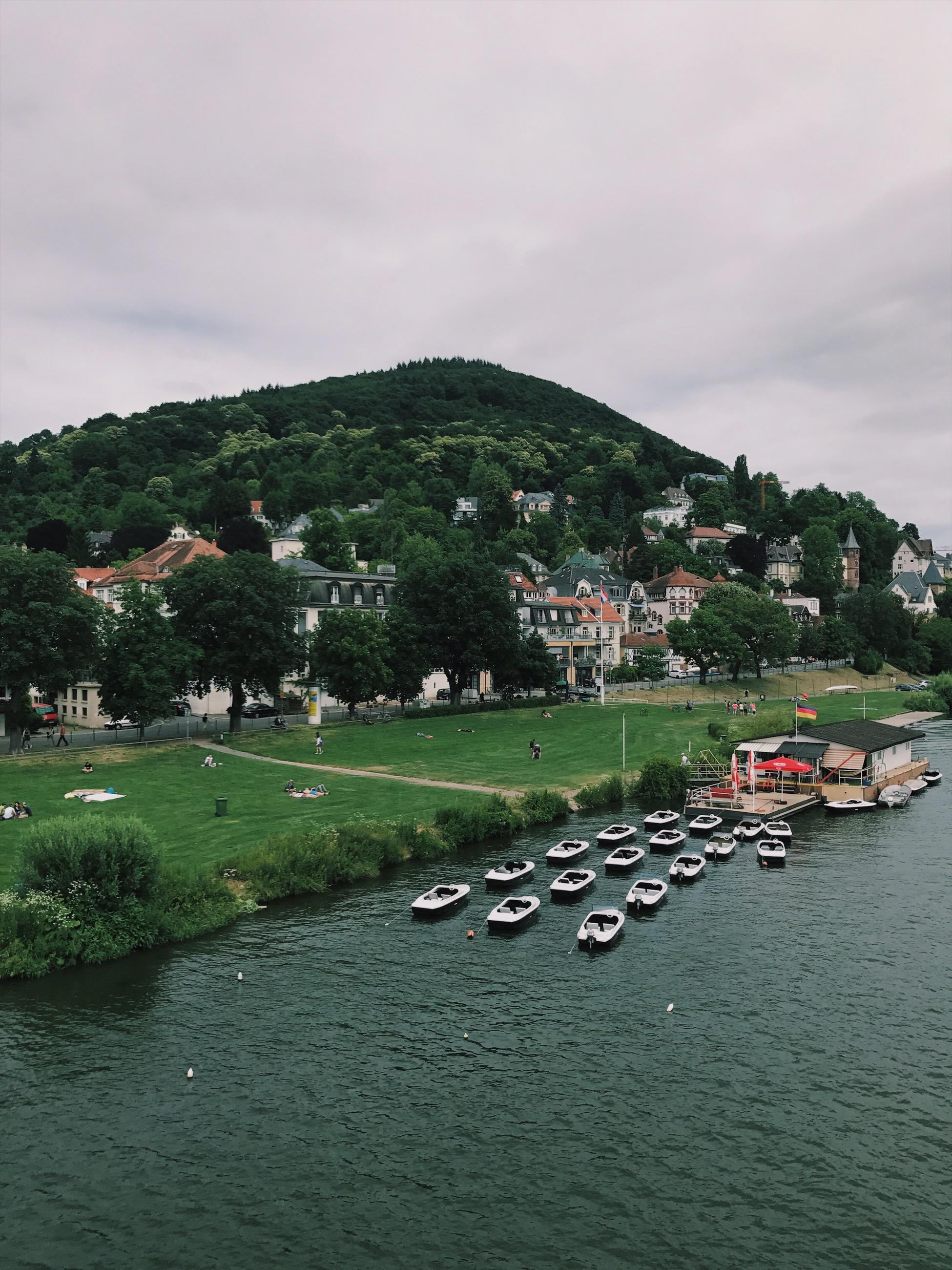 heidelberg view sommer